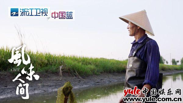 从风味人间看浙江卫视的纪录片情结